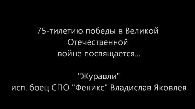 СПО Феникс - Журавли (исп. боец СПО Феникс Владислав Яковлев)