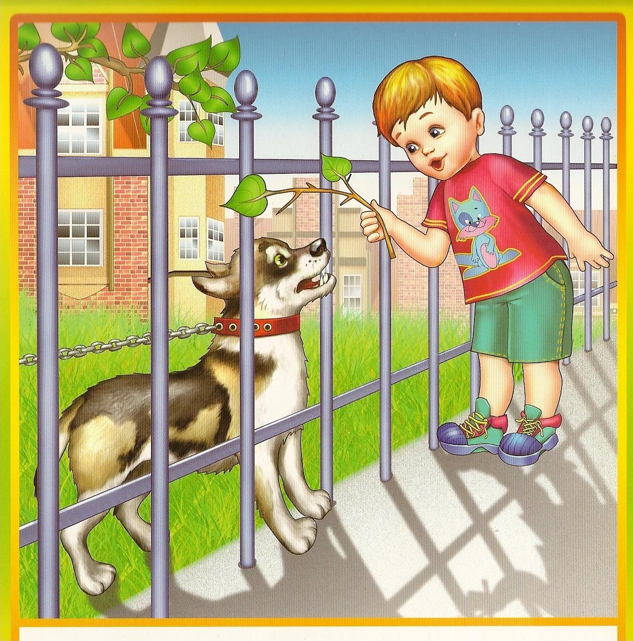 правила безопасного поведения с животными на улице