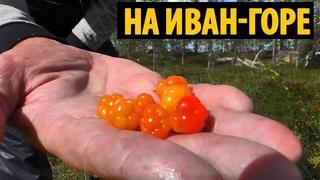 #15 Путешествие по Иван-горе | Тайная дача на озере | Канда - Кукса 2020