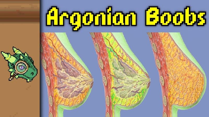 Argonian Boobs Elder Scrolls Leftover Lore
