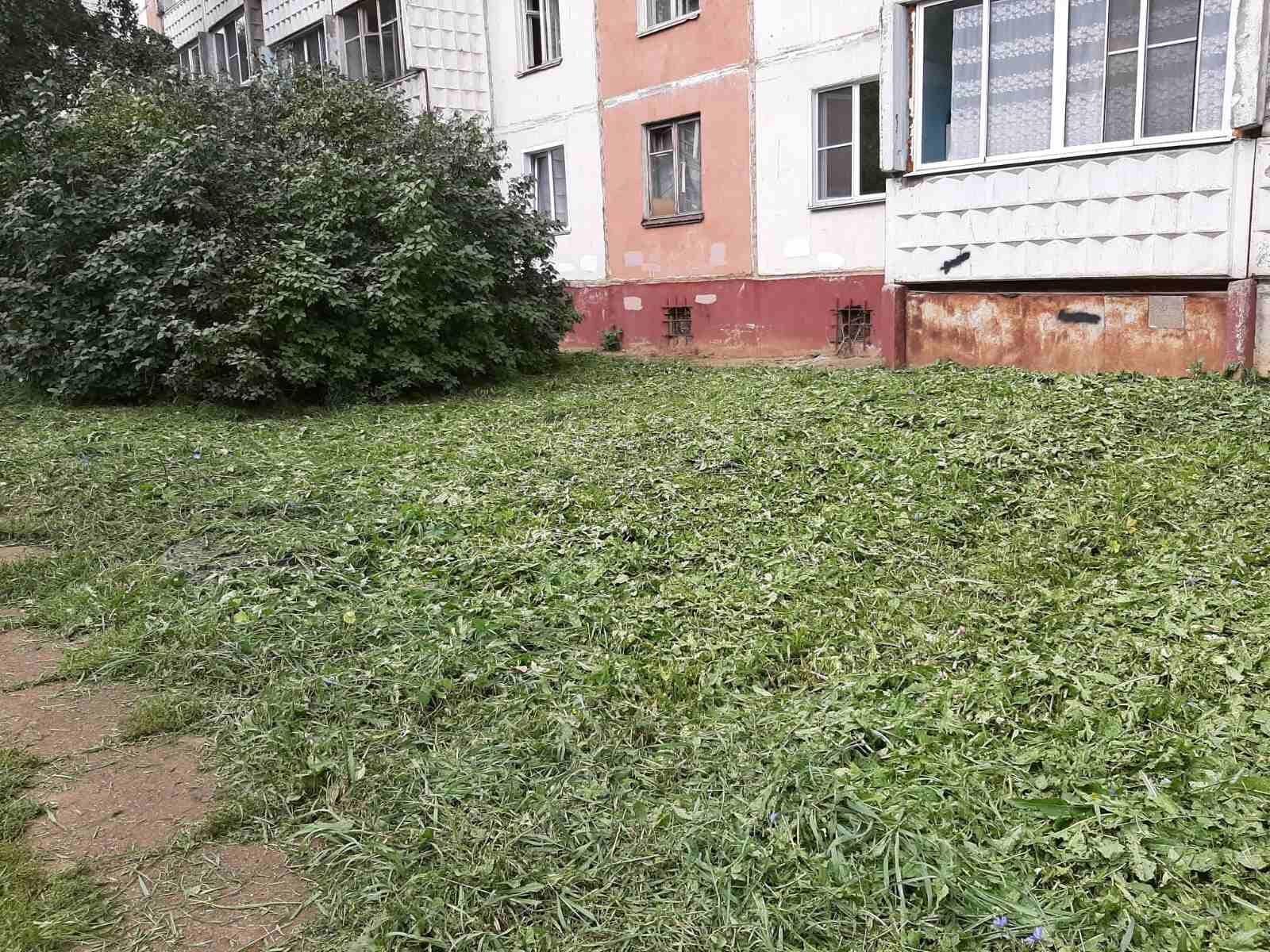 Улица Конева дом 5. Покос придомовой территорий