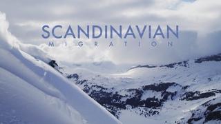 Scandinavian Migration   Salomon TV