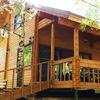 Woodex | Строим деревянные дома и бани