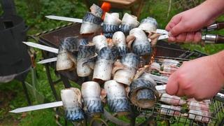 ШАШЛЫК из РЫБЫ   Рыба СКУМБРИЯ на Мангале. ENG SUB