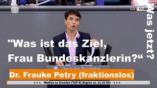 "Dr. Frauke Petry (fraktionslos): ""Was ist das Ziel, Frau Bundeskanzlerin?""  "