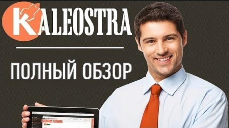 Kaleostra социальная бизнес сеть для поиска партнеров продвижения проектов товаров или услуг