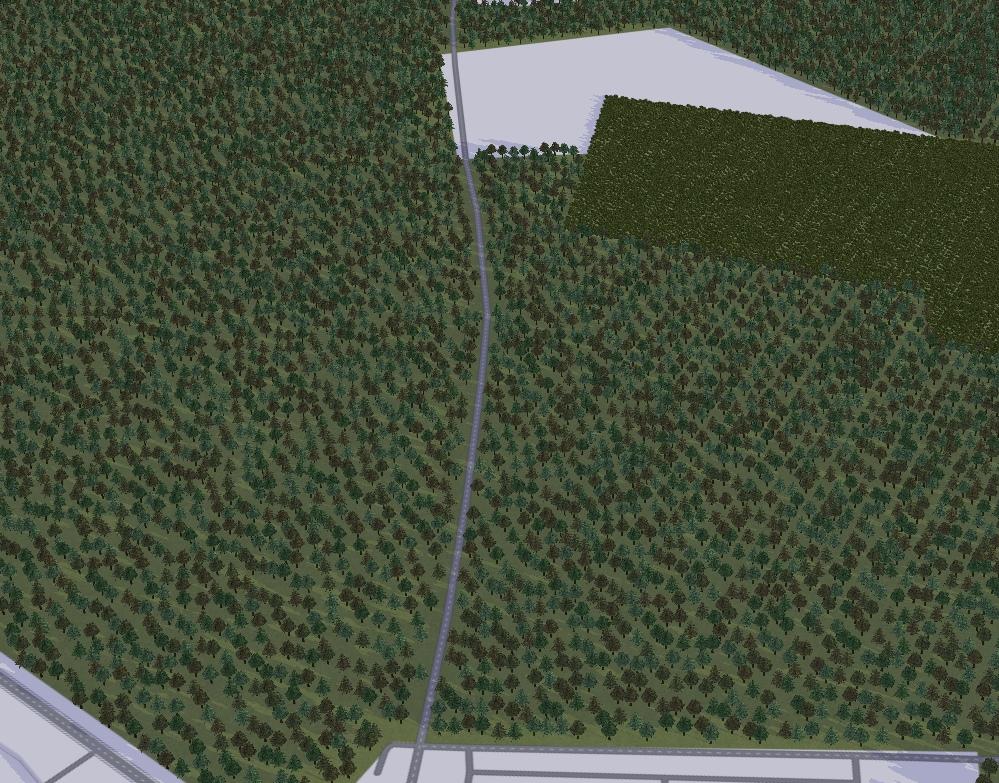 Дорога через лес F4