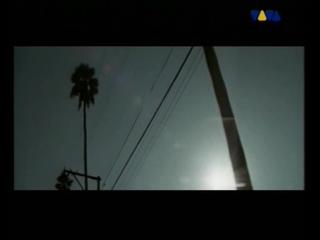 apex twin - windowlicker ( viva tv )