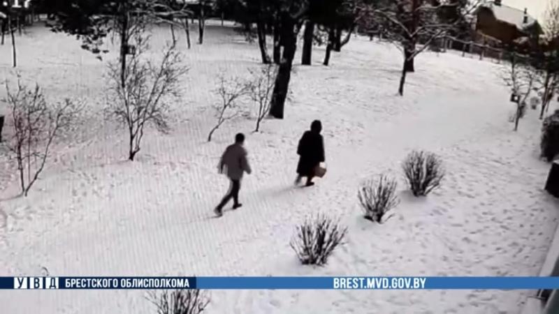 В Бресте средь бела дня на пожилую женщину напал грабитель в маске Есть видео