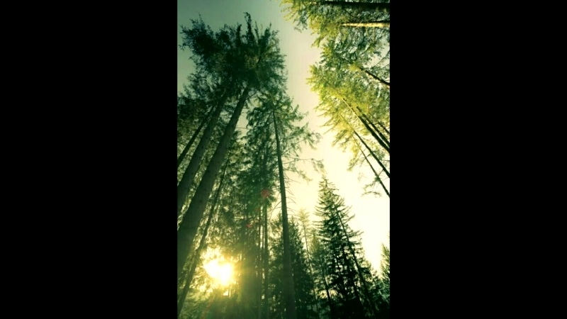 Lovely sky прилежное небо composer Vitaly Dudnikov Солнцемёд Sun Honey