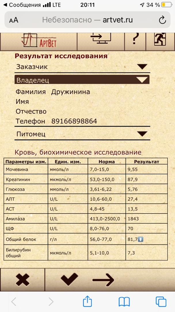 ulbRRVhJDa4.jpg?size=608x1080&quality=96