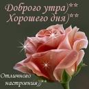 Фотоальбом Натали Грицишиной
