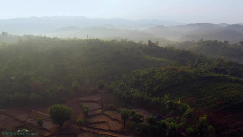 BBC Экспедиция в Бирму 3 В поисках тигров Познавательный природа животные 2013