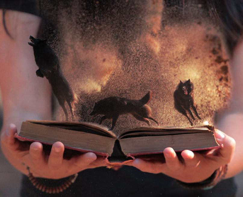На страницах живой книги обитают живые чувства, как звери в клетке. Хорошая книга — это не клетка. Хорошая книга — это целый лес...