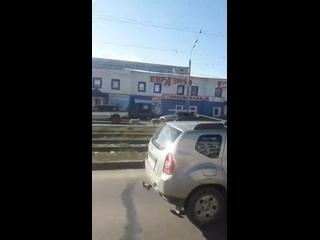 В Ижевске заметили двух баранов. Животные на хорош...
