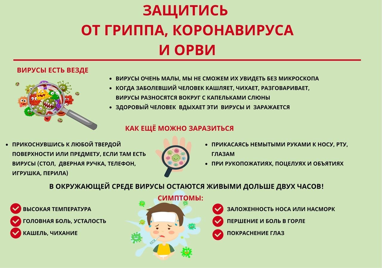 В Петровском районе на карантин по ОРВИ закрыто несколько классов в городской и сельских школах