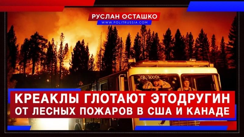 Креаклы глотают Этодругин слыша о лесных пожарах на Западе Руслан Осташко