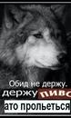 Личный фотоальбом Альфреда Магасумова