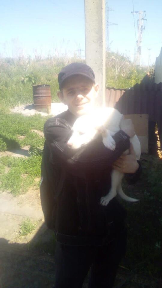 Белоснежныая малышка уехала домой Фото из дома прислали Счастья