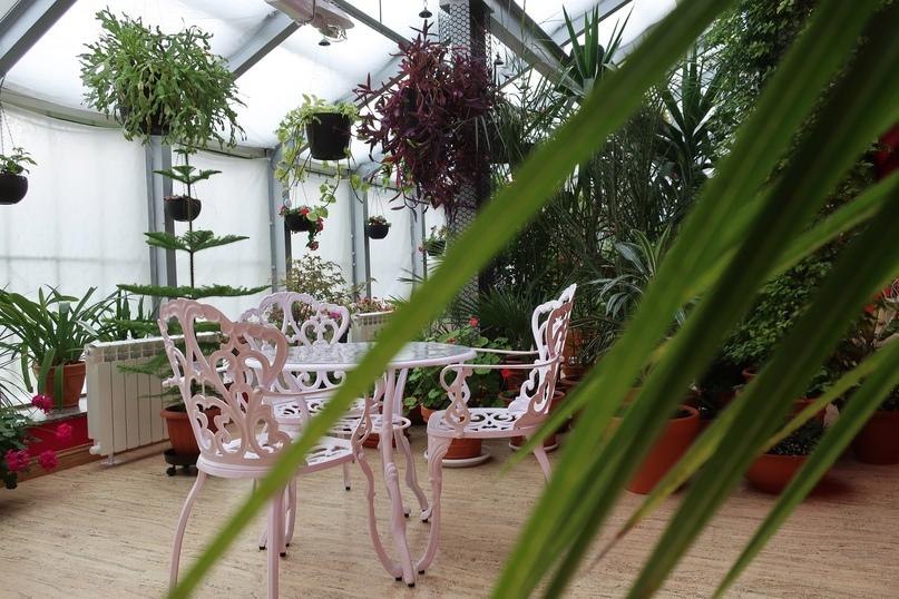 Зимний сад оранжереи Тверского императорского дворца Тверь