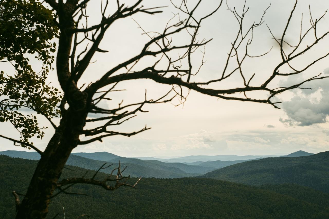 фото из альбома Кирилла Трушина №9