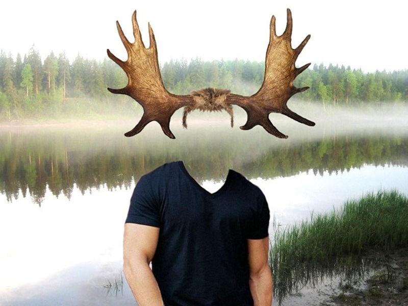 """Новую номинацию """"ветвистые рога"""""""