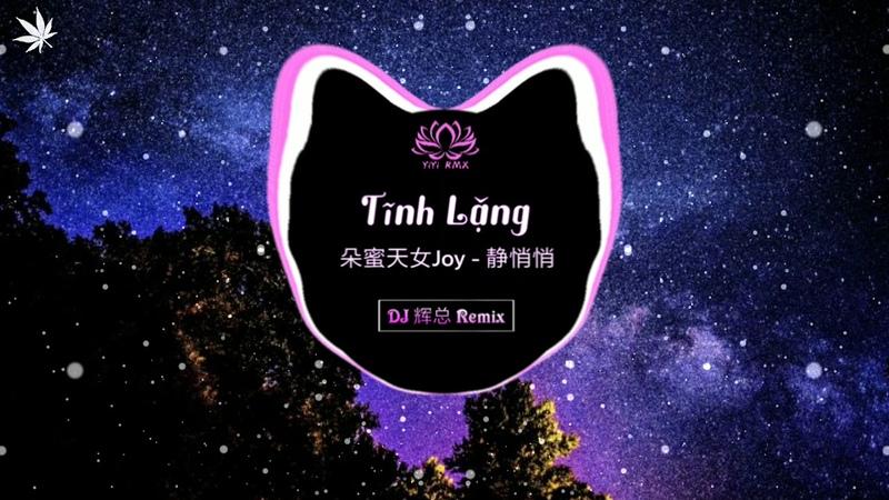 Đoá Mật Thiên Nữ - Tĩnh Lặng 朵蜜天女Joy - 静悄悄 (DJ 辉总 Remix v2)