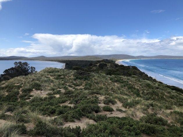 Три причины побывать в Тасмании, изображение №5