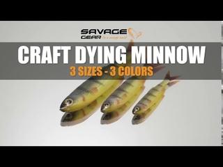 Craft dying minnow