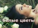 Шикарная песня! Послушайте! Белые цветы!