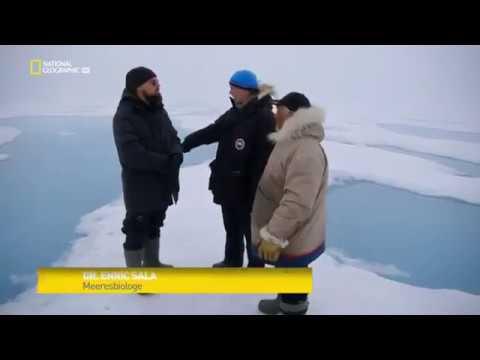 Спасти планету Before the flood документальный фильм Леонардо Ди Каприо и National Geographic