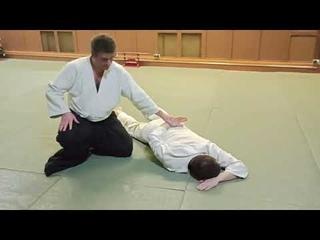 Некоторые техники из программы экзаменов на 2 кю в Ки-Айкидо