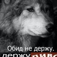 Фотография Альфреда Магасумова ВКонтакте