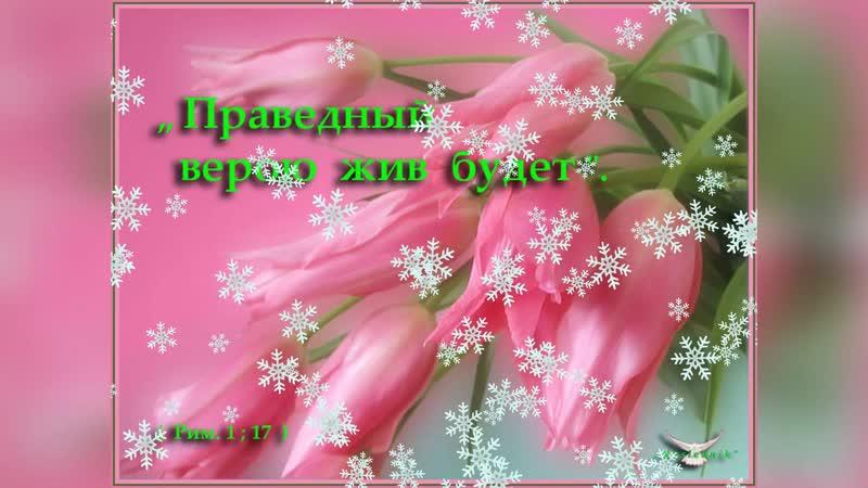 Стих Милосердный Бог Читает Любовь Коровинская Моим дорогим друзьям