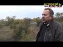 Проводится повторная проверка по факту массовой вырубки деревьев в крепости Керчь