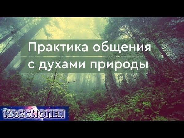 102 Практика общения с духами природы (плазмоидами) | Команда Кассиопеи в Крыму