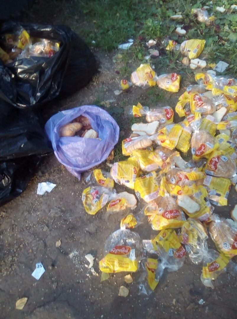 в центре нижнего новгорода неизвестные выбросили хлеб